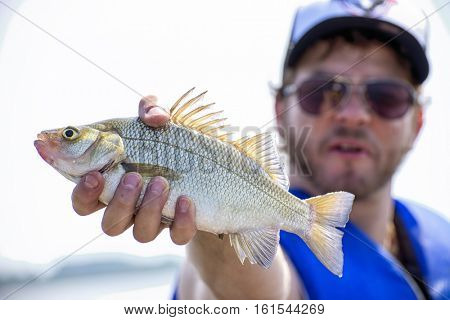 Fisherman with freshly caught freshwater drum fish in lake Erie, Ontario, Canada.
