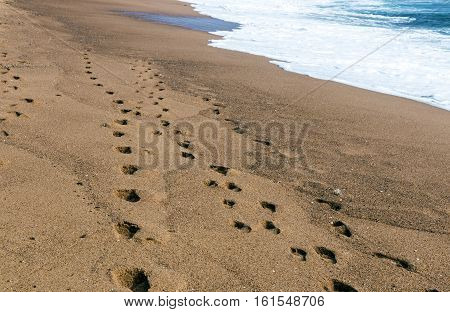 Footprints on wet textured beach sand next to ocean shoreline in Africa