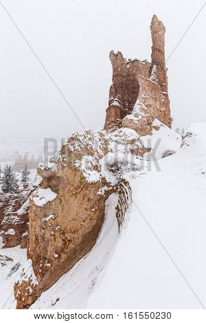 Heavy snow fall on hoodoo formation at Bryce Canyon National Park in Southern Utah.
