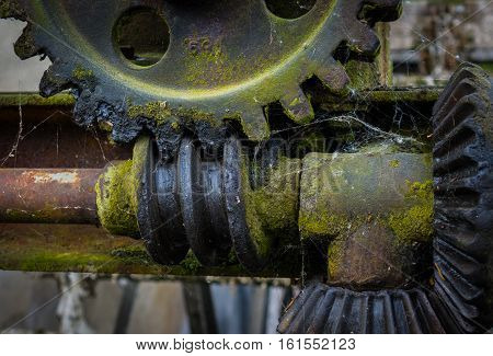 Old And Rusty Gear In The  Sunshine.