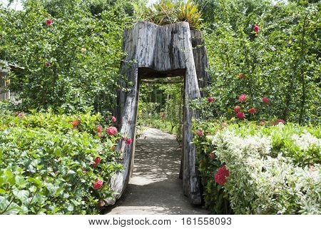 The path with a wooden arch in Belize City botanical garden (Belize).