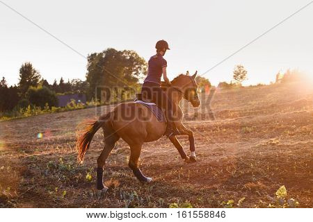 Young Girl riding horse at sunset. equitation