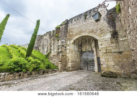 Amboise, France - June 2016: in Amboise castle park