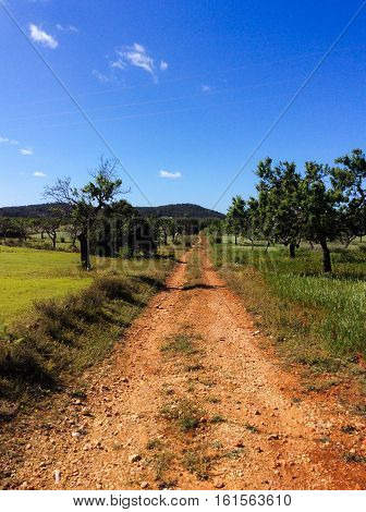 Country side in Ibiza, offroad, blue sky