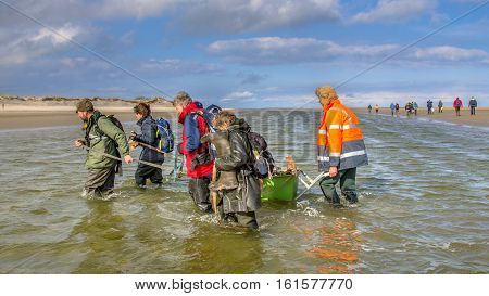 ROTTUMERPLAAT NETHERLANDS - MARCH 6: Soil investigation expedition party crossing tidal channel on Rottumerplaat Island protected nature reserve on march 6 2016