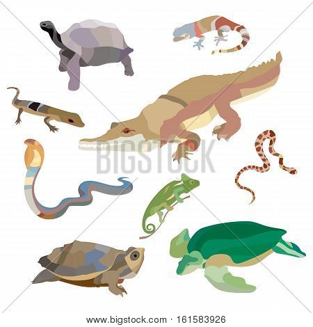 Reptiles and amphibians decorative set of lizard, crocodile, turtle, cobra, snail icons in cartoon style isolated. Vector illustration