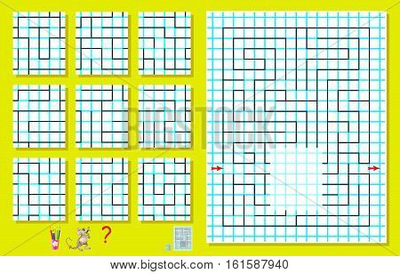 Logic puzzle with labyrinth on a square paper. Need to find the only one correct piece and draw it so to pass the way from beginning to end. Vector image.
