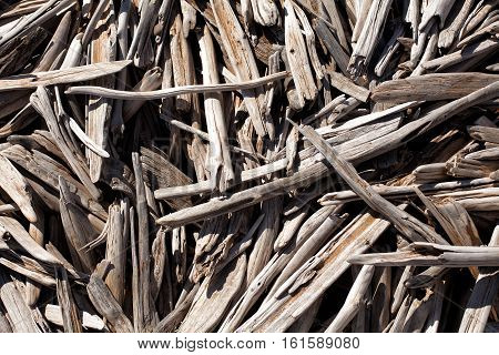Pieces Of Driftwood