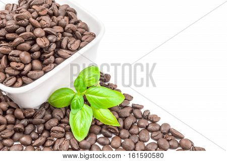 Brazilian coffee isolated on a white background cutout