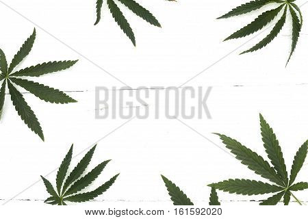 Leaves of marijuana around the frame lie on a white background, a wooden table top