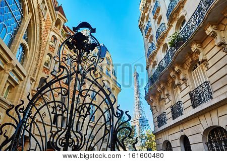 Eiffel Tower And Beautiful Metal Grating