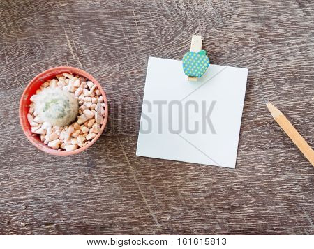 Top view blank paper note and pencil with cactus on wooden background copy space