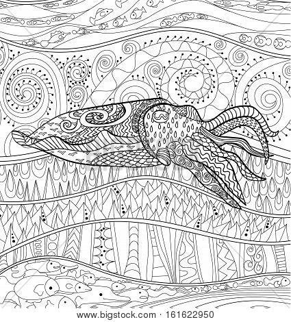 Cuttlefish with high details. Adult antistress coloring page. Black white mollusk for art therapy. Abstract pattern with oceanic elements for relax coloring for grown ups in zentangle style. Vector.