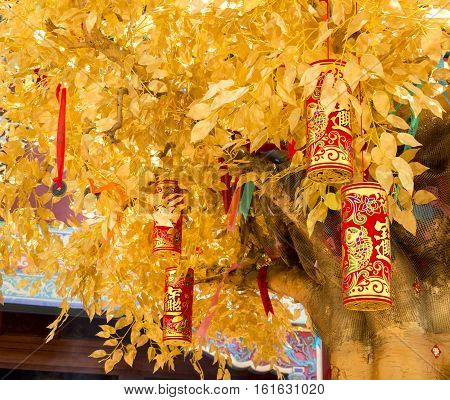 The background Chinese Wishing Tree with the traditional golden firecrackers bringing you luck and happiness. Chinese New Year.