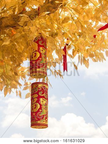 The Chinese Wishing Tree with the traditional Chinese golden firecrackers bringing you luck and happiness. Chinese New Year.