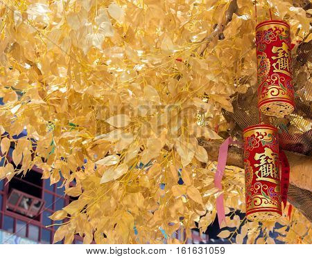 The Chinese Wishing Tree with the traditional Chinese red golden firecrackers bringing you good luck and happiness. Chinese New Year.