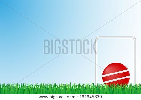 croquet grass field vector illustration isolated on background