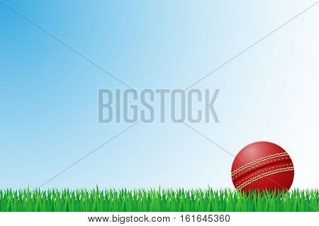 cricket grass field vector illustration isolated on background