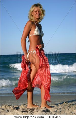 beautiful blonde in red skirt on the beach poster