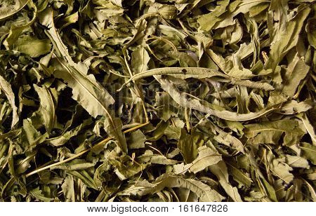 fireweed angustifolia dried natural texture natural background