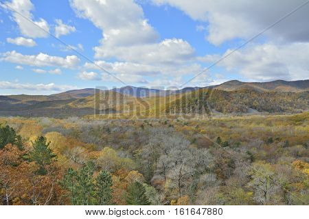 A landscape in autumn taiga with clouds on blue sky.