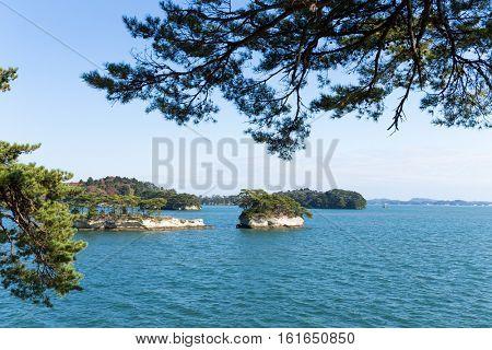 Island in Matsushima of Japan