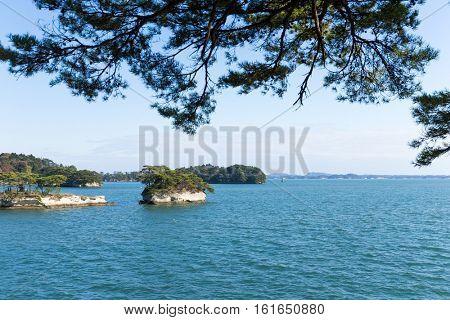 Island in Matsushima Bay of Japan