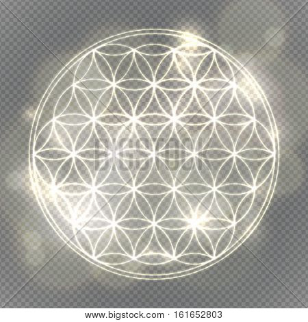 Flower of life. Sacred geometry, vector spiritual symbol. Silver neon vector illustration.