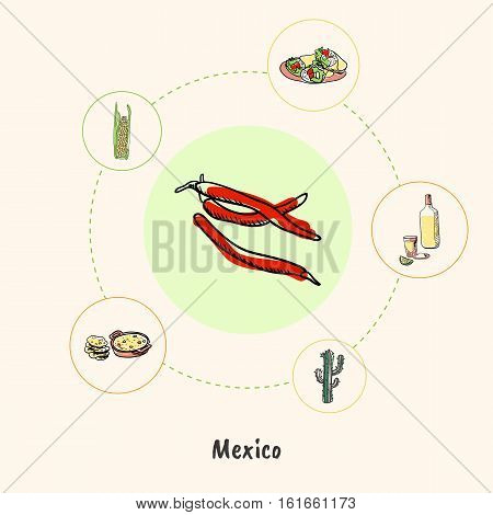 Attractive Mexico. Chilli peppers colored doodle surrounded cactus, bottle of tequila, burritos, corn, lecho hand drawn vector icons. Mexican national cuisine symbols. Travel in Latin America