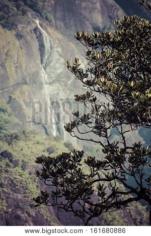 Beautiful Waterfall Near Adam's Peak. Sri Lanka.