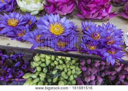 Flowers Sold To Be Used As Offerings In Front Of The Temple Of The Tooth Relic In Kandy (sri Lanka).