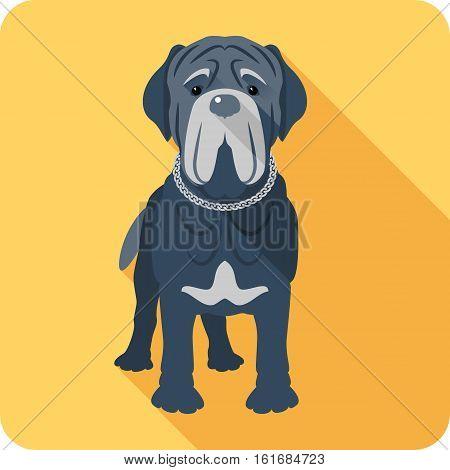 Vector serious dog Neapolitan Mastiff or Mastino icon flat design