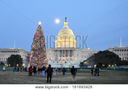 Washington DC in Christmas - United States Capitol and Christmas Tree