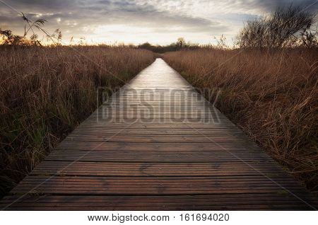The boardwalk at Cosmeston Lakes Country Park, situated between Penarth and Sully in the Vale of Glamorgan, South Wales
