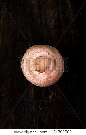 Single Champignon Mushroom On Wooden  Board
