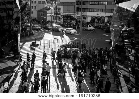 TOKYO, JAPAN - NOVEMBER 12, 2016: Pedestrians crosswalk at Shibuya district in Tokyo, Japan. Shibuya district is very popular shoping destnation in Tokyo.
