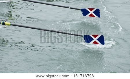 Two ores glide out of the water as a rowing team races forward.