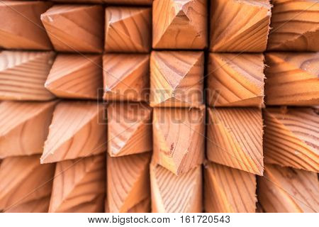 closeup shot of a bunch of wooden spikes