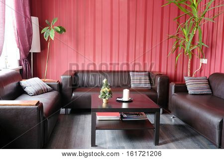 Interior of an empty visitor room in business center with skin furniture in it, green flowers, pictures on a wall with red wall-paper