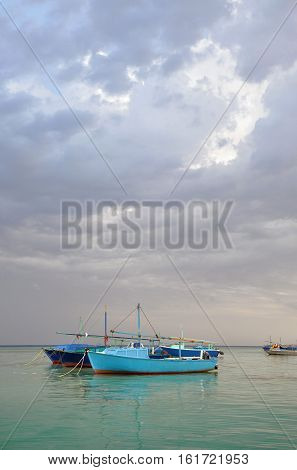 Fishing boats in the Egyptian port. Africa.