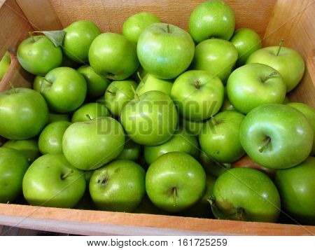A crate of freshly picked granny smith apples.
