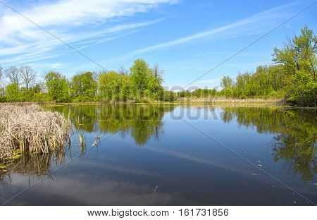 Scenic summer landscape with perfect reflections