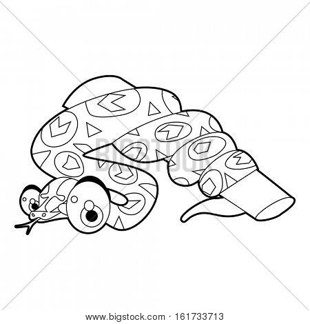 coloring pattern page. Funny cute cartoon animals.  Reptiles. Anaconda