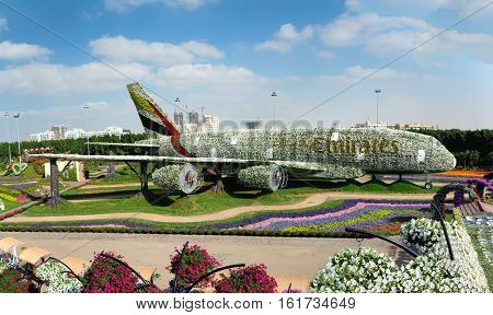 DUBAI UAE - DECEMBER 8 2016: Dubai Miracle Garden: The world's biggest natural flower garden. Structure forming the shape of the Airbus A380.