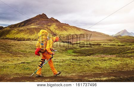 hiker with backpack on the trail in the mountains. Treking in Iceland. hiker looking at the phone.