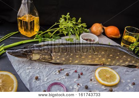 Fresh pike with spices and greens on white parchment. Wooden blackbackground. Top view