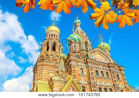 Cathedral of Our Savior on Spilled Blood in St Petersburg Russia in sunny autumn day. Architecture autumn view of St Petersburg landmark