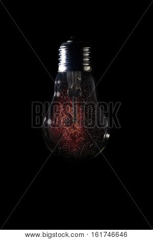 Rosette Nebula Inside Of Light Bulb On Dark Background