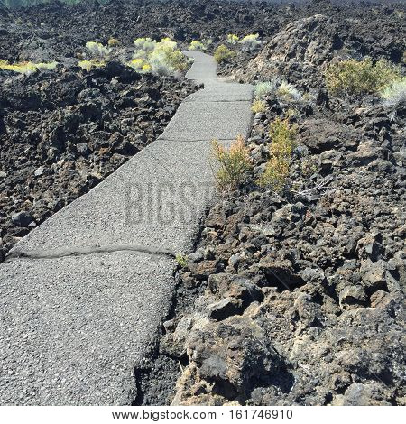 A path winds through the lava rock fields and bushes that somehow grow there at Lava Butte in Central Oregon on a summer day.