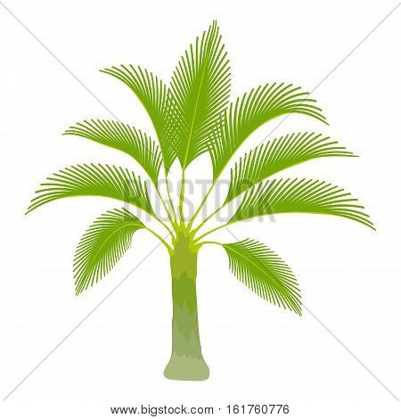Spreading palm icon. Cartoon illustration of spreading palm vector icon for web